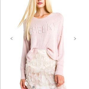 NWT Wildfox Cheeky Sweater Size Small